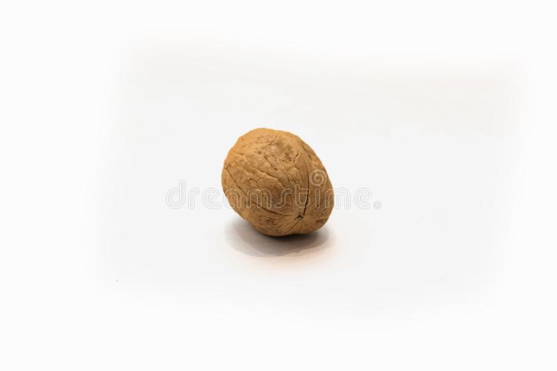 Walnut in white background. Dried nutshell crust royalty free stock photos