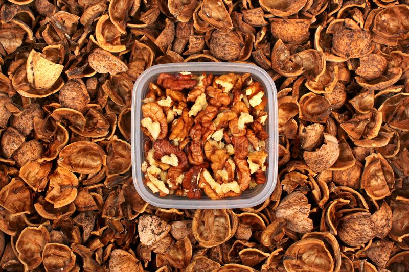 Walnut kernels and shells as background.  stock photo