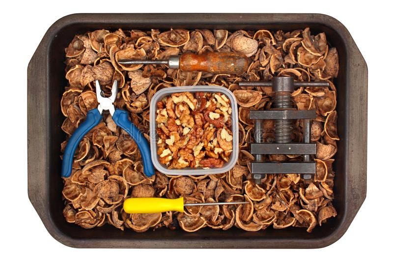 Walnut kernels and shells with tools in a tray, isolated on white background.  royalty free stock image