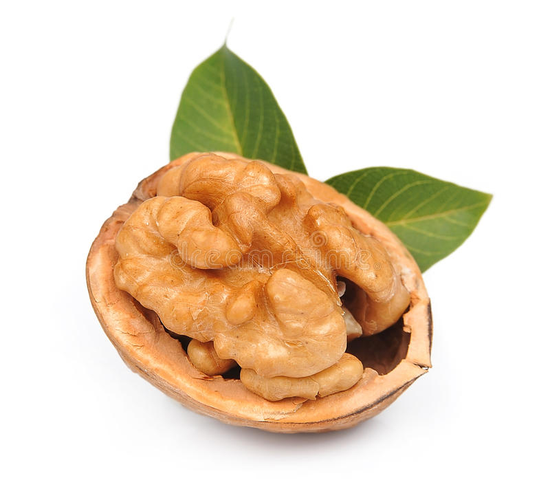 Download Walnut with leafs stock photo. Image of nutrition, vitamins - 27276926