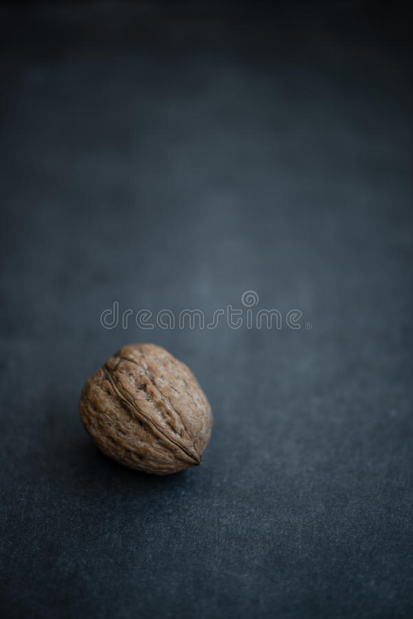 Walnut Nut resting on dark background stock photography