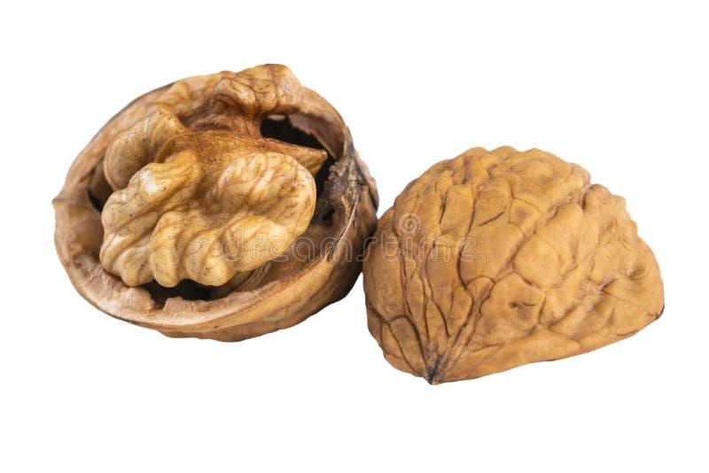 Walnut op de witte achtergrond Sluiting van hele walnoot, geïsoleerd op witte achtergrond Een walnoot in zijn geheel op een witte stock afbeeldingen