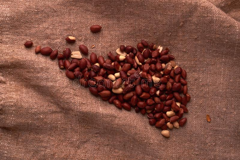 Walnut peanut scattered in the form of a continent north america on sackcloth background. Space for text. Copyspace. Walnut peanut scattered in the form of a royalty free stock images
