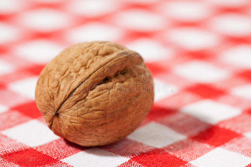 Download Walnut On Picnic Tablecloth Stock Photo - Image of seed, ingredient: 15127116