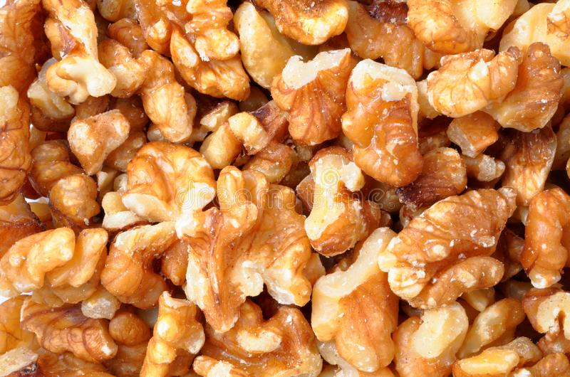 Walnut Pieces royalty free stock images