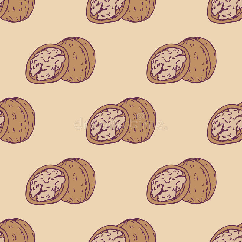 Walnut seamless pattern royalty free illustration
