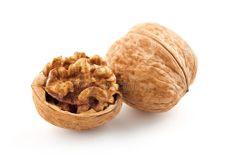 Walnut in shell stock photo