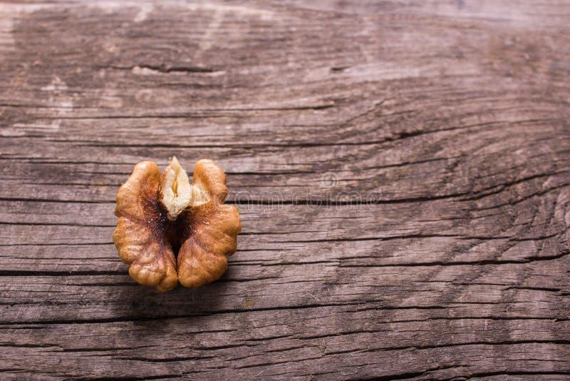 Walnut without shell stock image