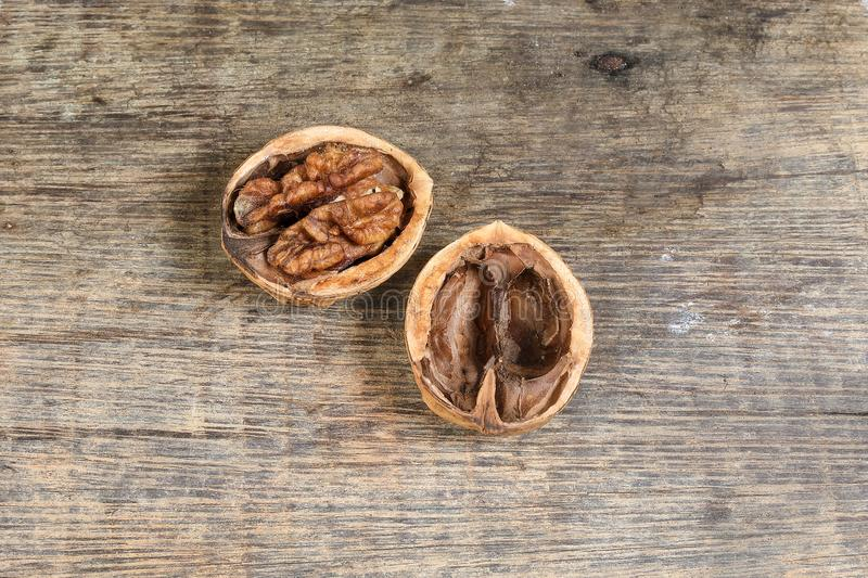 Walnut in shell on rustic wood royalty free stock image