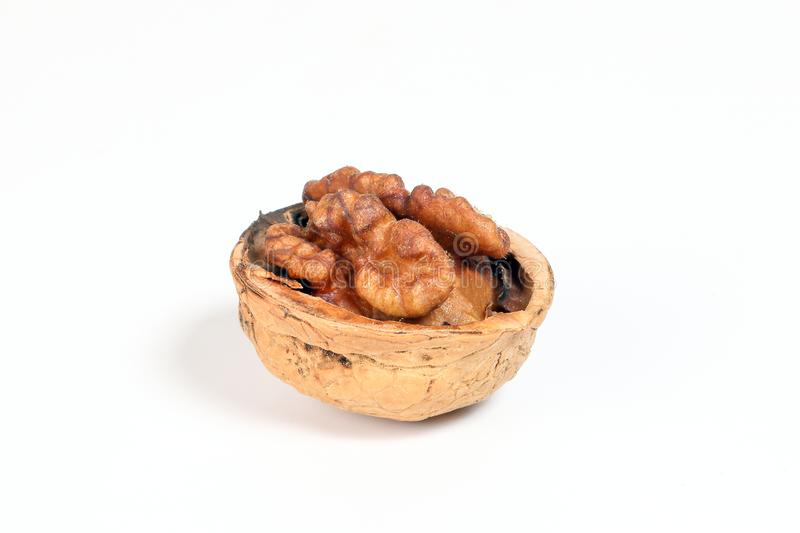 Walnut in shell stock images