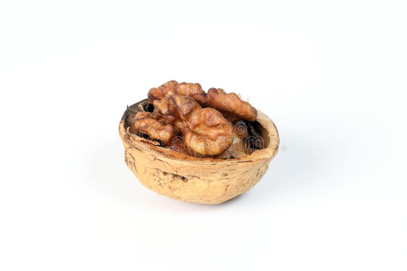 Walnut in shell royalty free stock images