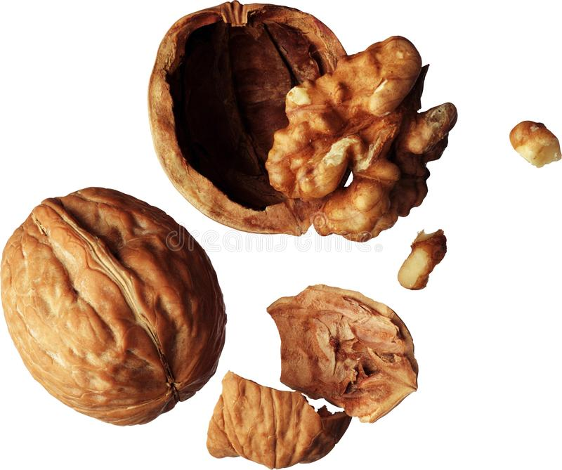 Walnut, walnut kernel, walnut pieces royalty free stock photography