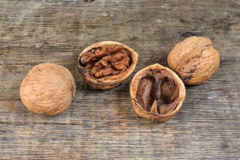 Walnut, walnuts, background royalty free stock images