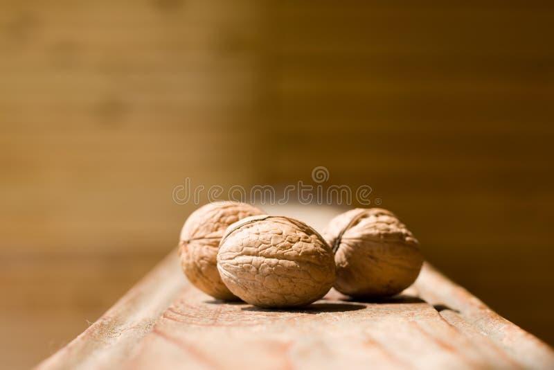Walnut on wood 02 royalty free stock photo