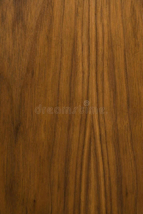Walnut wood background stock photography