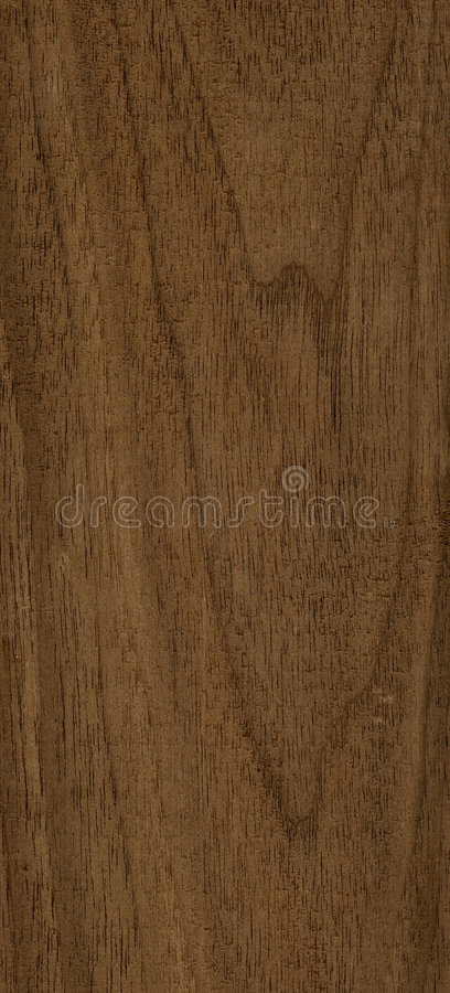 Walnut wood texture stock image