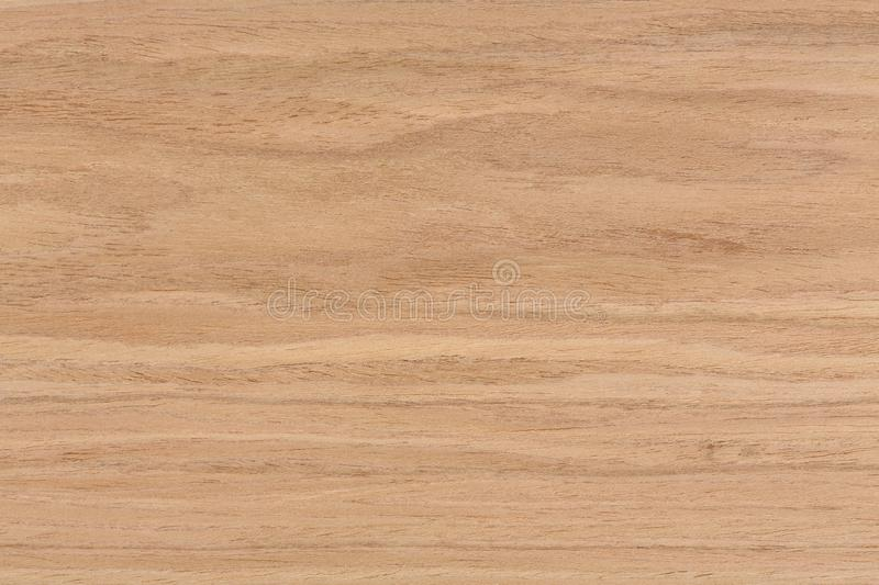 Walnut Wood Texture On Macro Stock Photo Image Of Material Detail 106090238