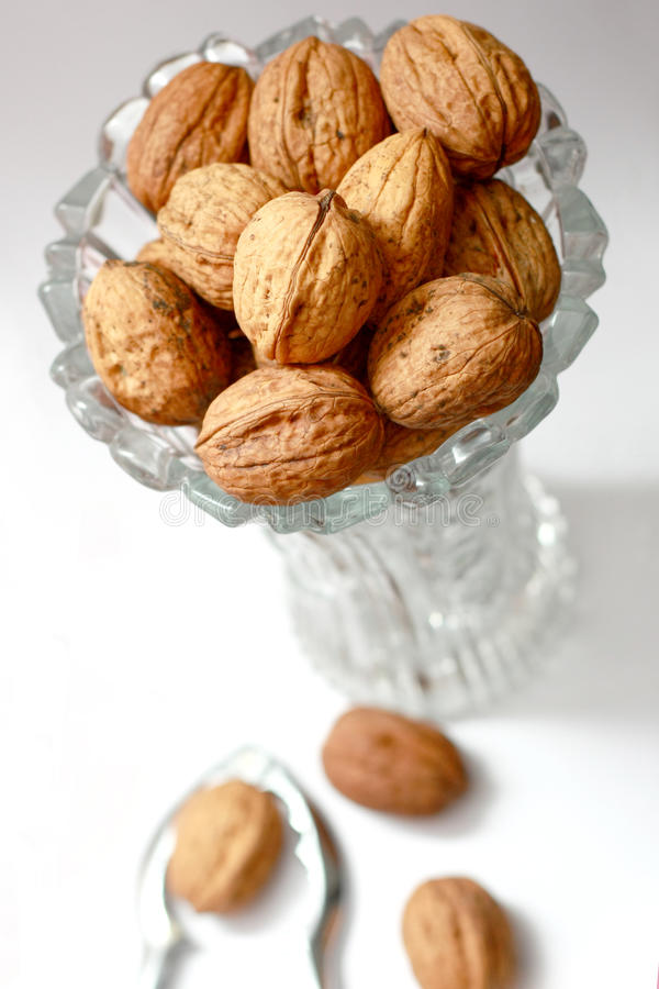 Download Walnuts Stock Images - Image: 13058034