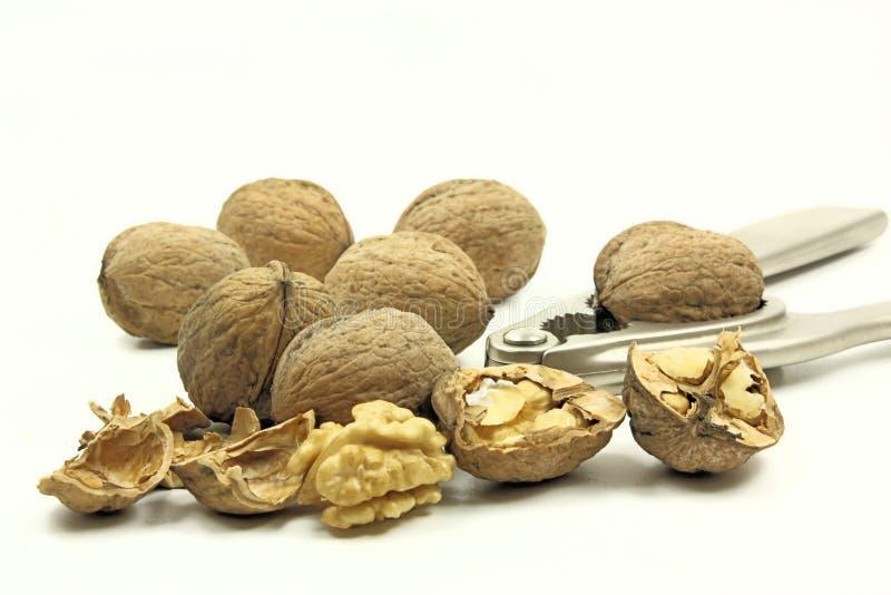 Download Walnuts stock image. Image of nuts, delicious, nutcracker - 17585429