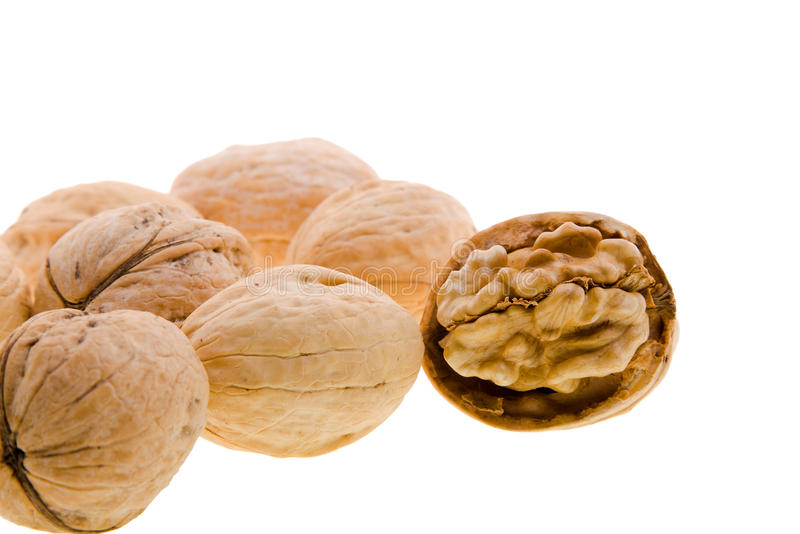 Download Walnuts stock photo. Image of open, food, isolated, clean - 17803632