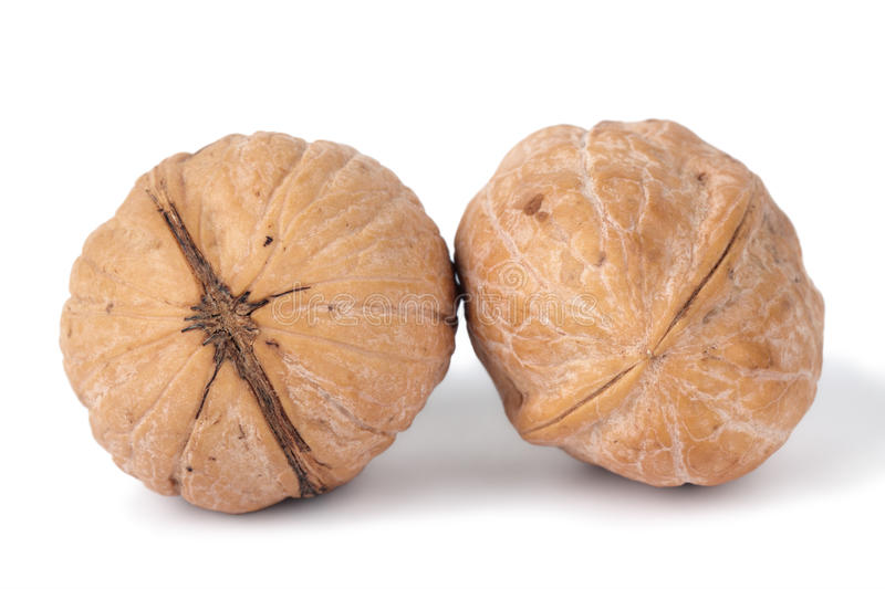 Download Walnuts stock image. Image of rough, close, nobody, food - 18292771