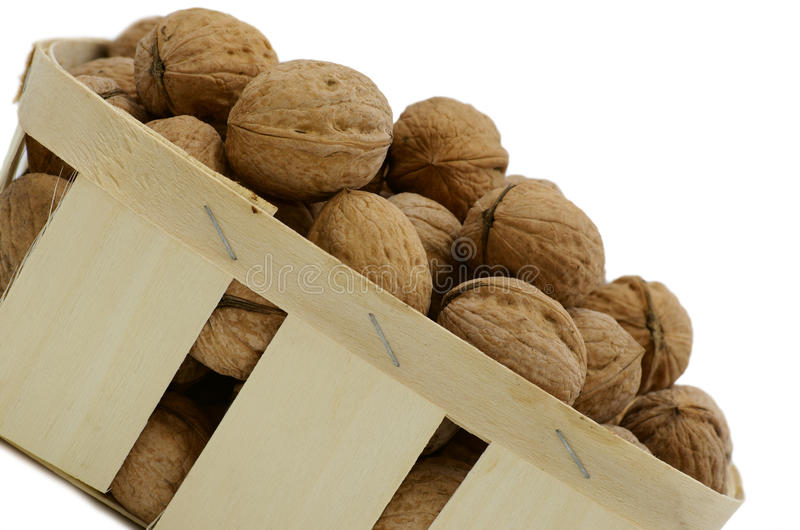 Download Walnuts stock photo. Image of group, food, much, walnut - 19676782