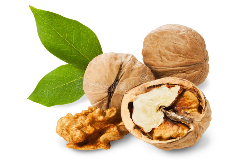 Download Walnuts stock image. Image of food, open, macro, natural - 21222607