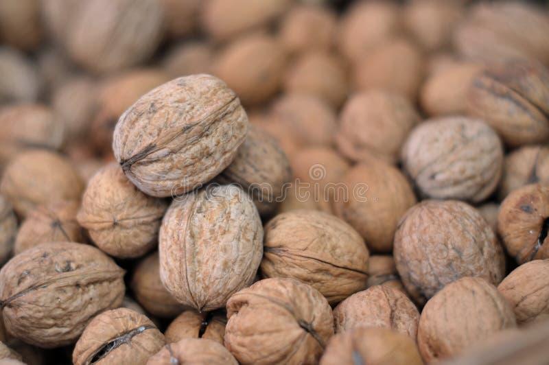 Download Walnuts Royalty Free Stock Image - Image: 27498206