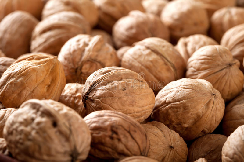 Walnuts. Plenty of whole walnuts close-up for background stock photography