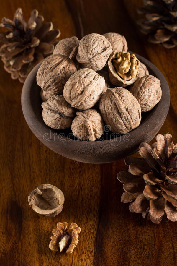 Download Walnuts stock photo. Image of fall, cracked, nuts, decor - 27875246