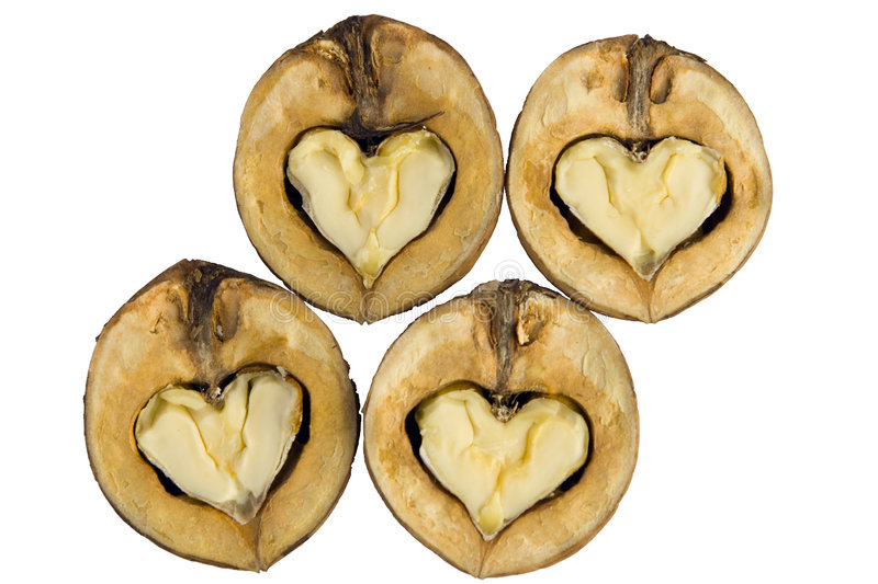 Download Walnuts - as hearts stock photo. Image of tasty, seeds - 1410914