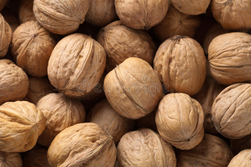 Walnuts background. Plenty of walnuts, top view for background royalty free stock photography