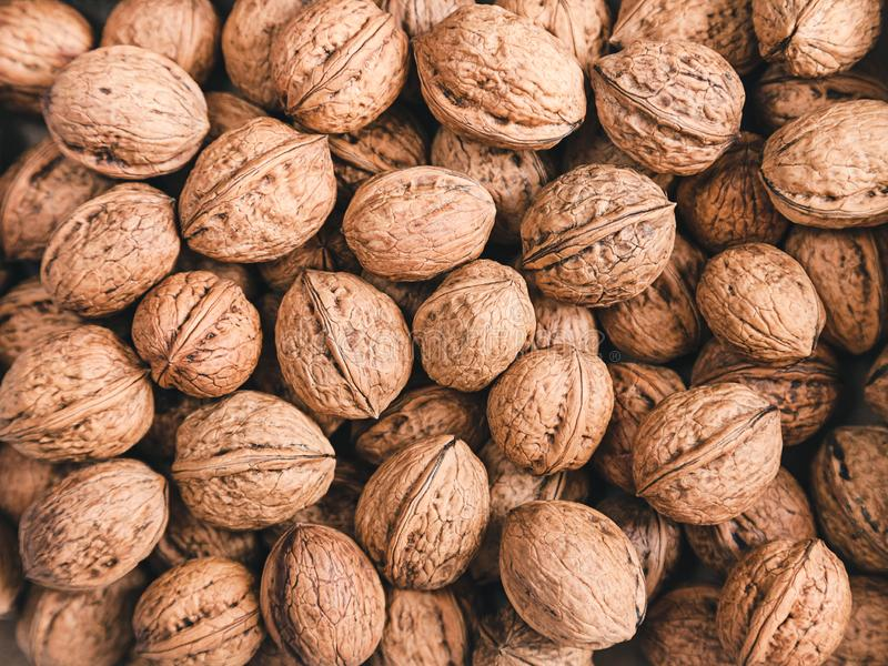 Walnuts background a lot in the shell. Many unpeeled brown inshell walnuts - background royalty free stock image