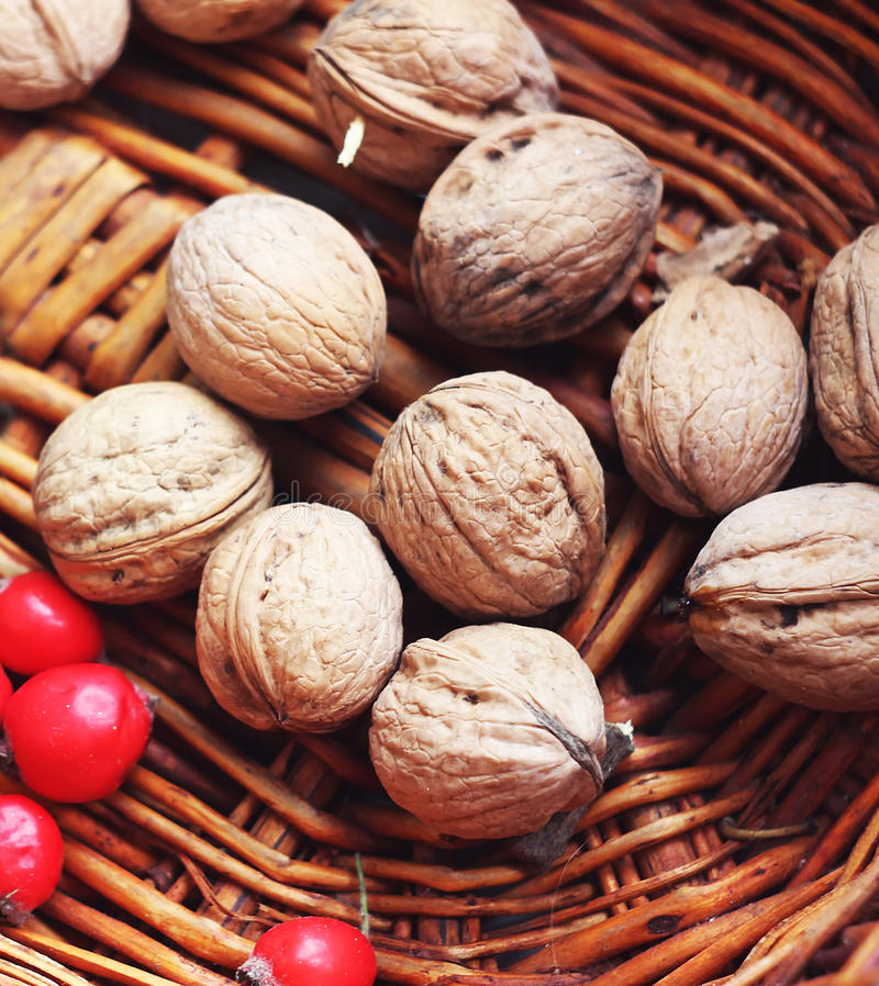 Walnuts and berries in a basket stock photo