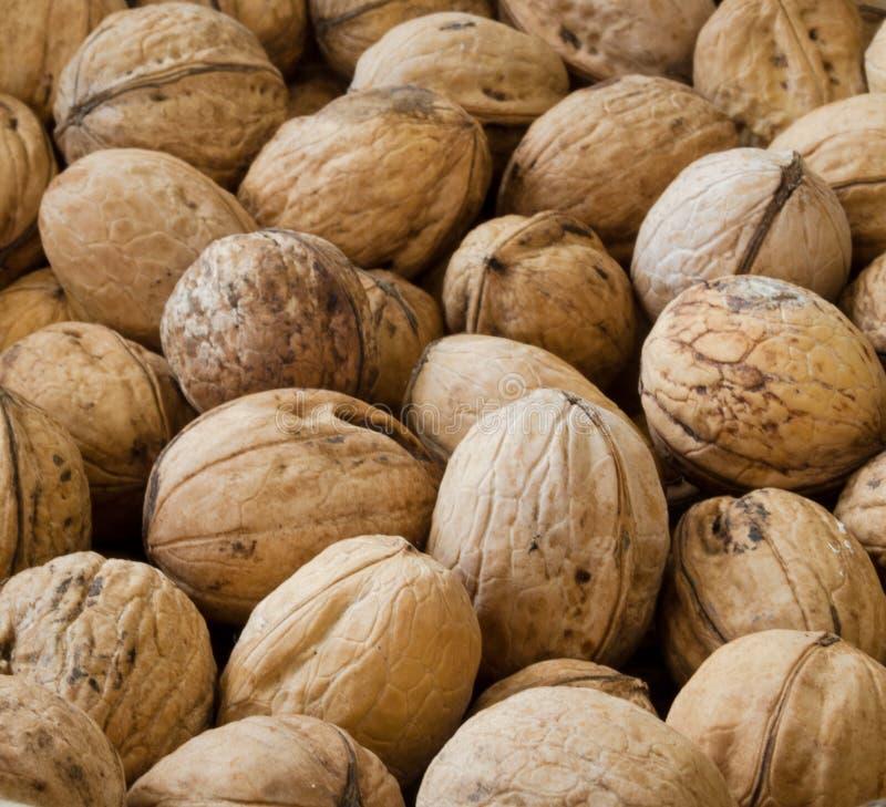Walnuts close up. Very good natural inshell walnuts close up royalty free stock image