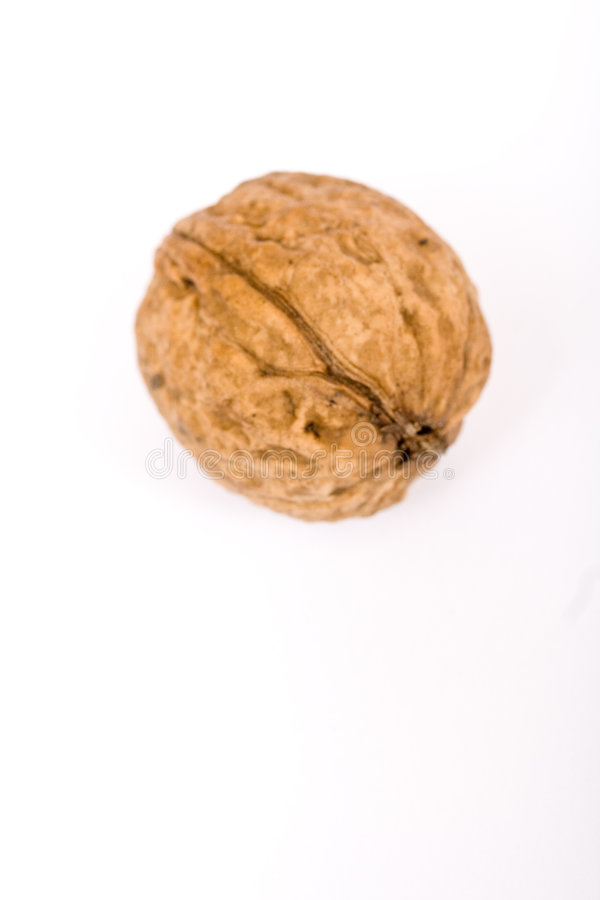 Free Walnuts Close Up Isolated Stock Photo - 3075800