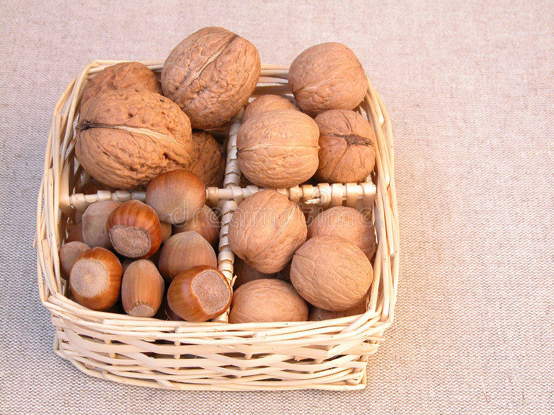 Walnuts and hazelnuts royalty free stock photography