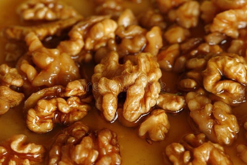 Walnuts in honey royalty free stock photo