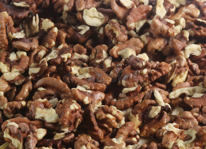 Walnuts isolated stock images