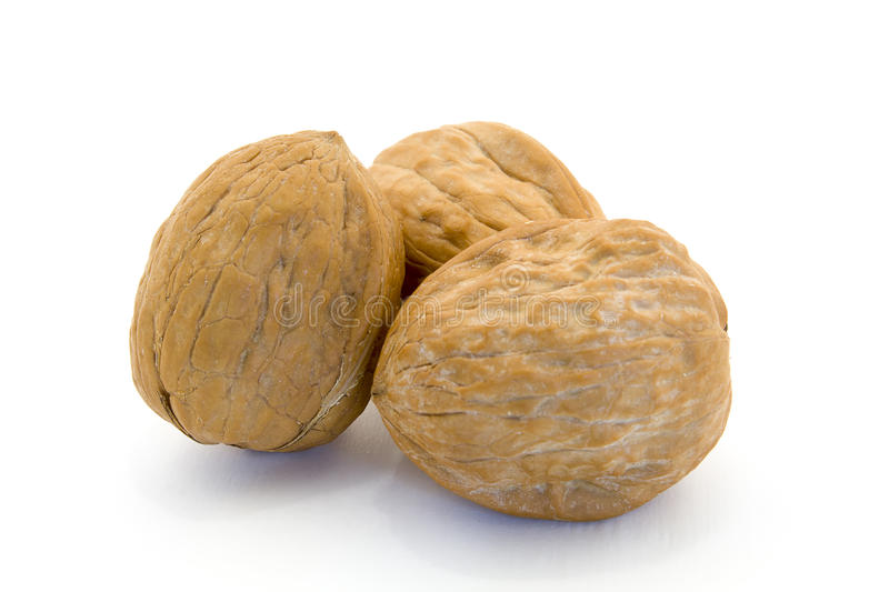 Walnuts. Isolated on a White Background royalty free stock photography