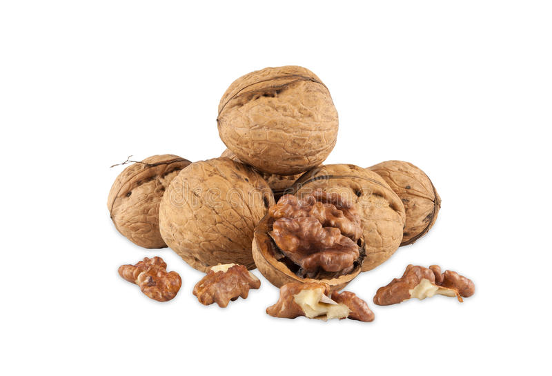 Walnuts. Isolated on white background with clipping path stock photography
