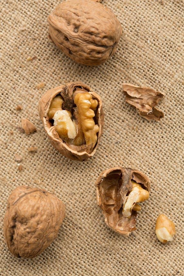 Download Walnuts stock photo. Image of wood, image, food, overhead - 30282650