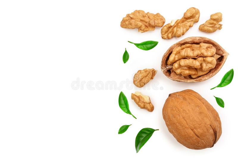 Walnuts with leaf isolated on white background with copy space for your text. Top view. Flat lay.  royalty free illustration