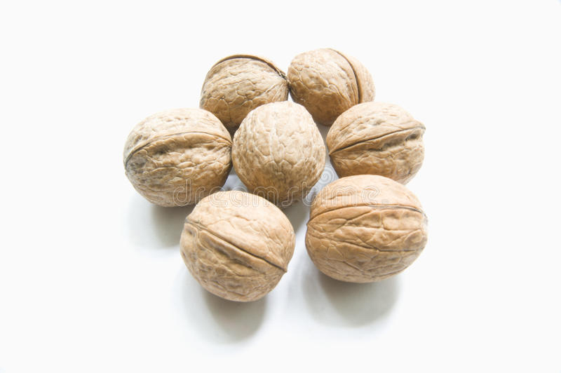 Walnuts. Mature nuts are food and high-level drug. The caloric content, they are twice as high as white bread flour. Nuts (kernels) are used in natural, shredded royalty free stock photography