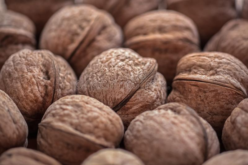 Walnuts scattering, a bunch of nuts in the shell royalty free stock photos