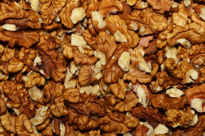 Walnuts without shell royalty free stock photo