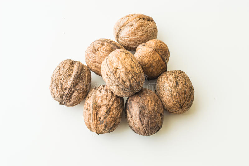 Walnuts in shell on a white background. Close up of walnuts in shell on a white background royalty free stock images