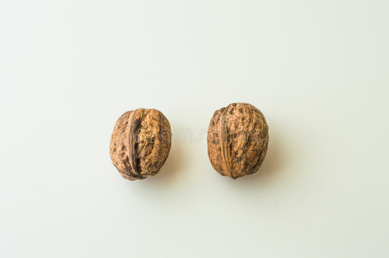 Walnuts in shell on a white background. Close up of walnuts in shell on a white background stock photo
