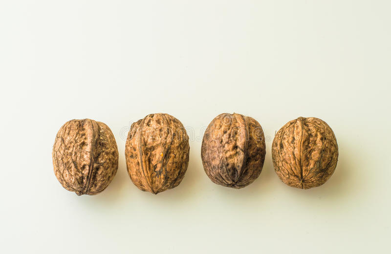 Walnuts in shell on a white background. Close up of walnuts in shell on a white background stock images