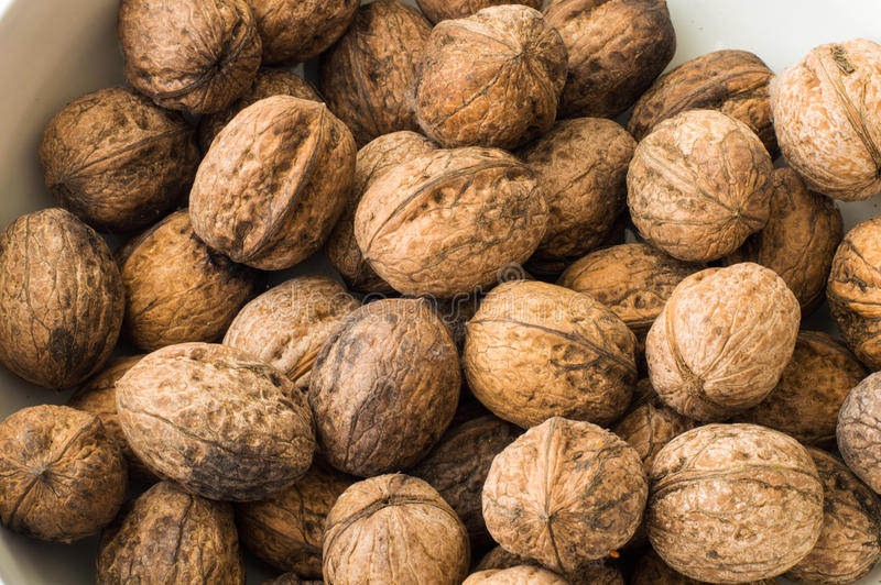 Walnuts in shell on a white background. Close up of walnuts in shell on a white background stock photos